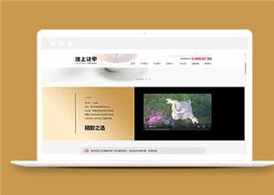 160号英文经典白色背景简洁小商品配饰购物商城响应式网站建设,任意定制多风