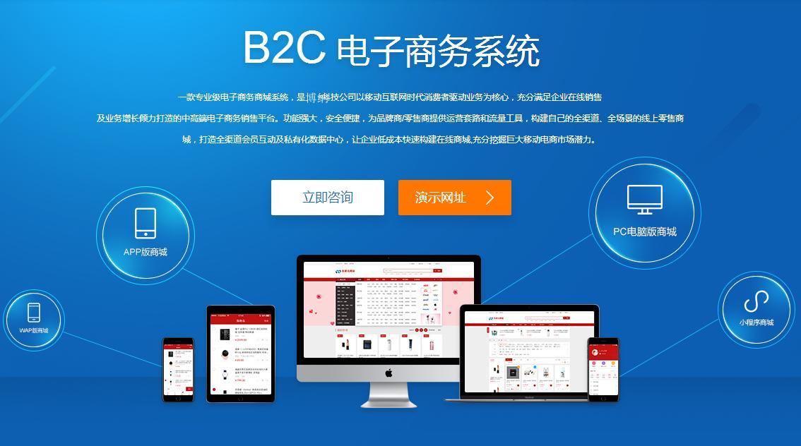 网站开发:企业开发一款电商系统能带来什么优势?
