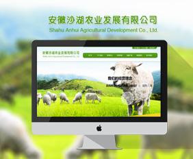 安徽沙湖农业