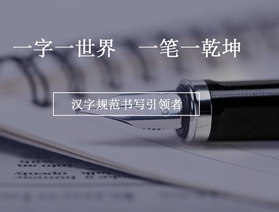 大好汉字教育网站建站案列