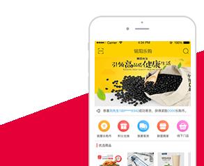 西田乐购app制作案例