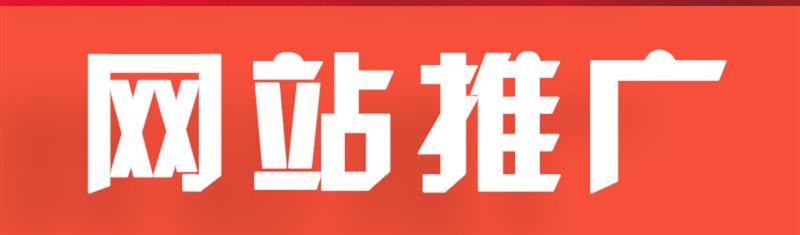 网站推广公司浅析出租二级域名盈利
